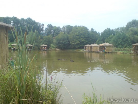 Ачигварское озеро