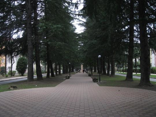 Адлер. Аллея по Куйбышева