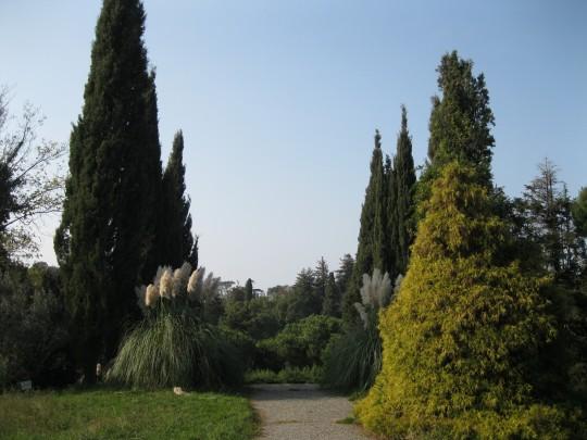 Южные Культуры. Парк
