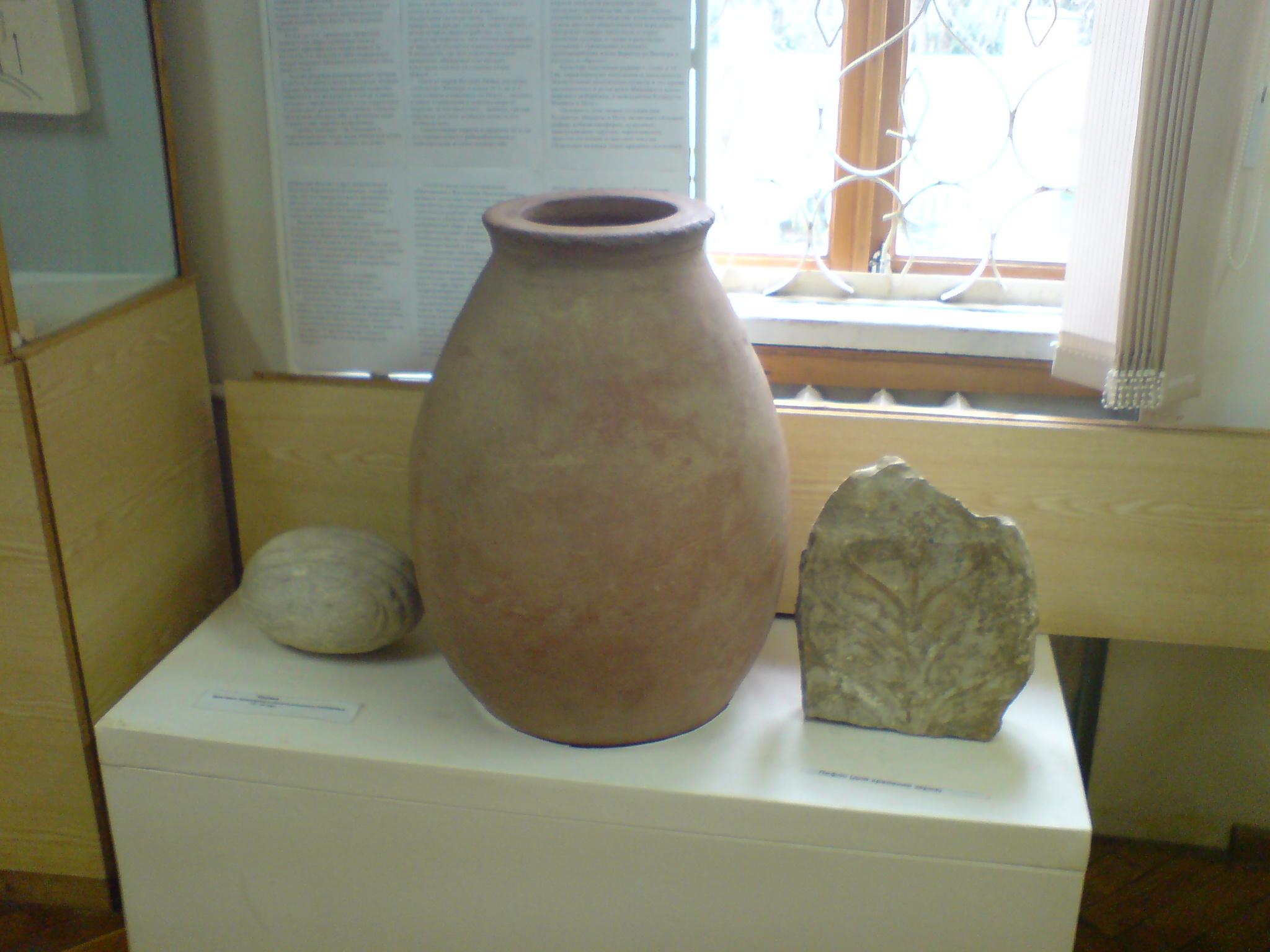 Музей истории Адлерского района Сочи